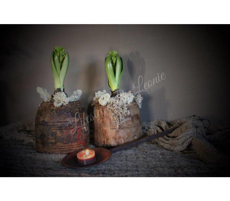 Zijden Hyacinth met bol green
