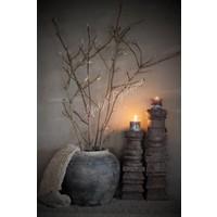 Bosje magnolia takken |Knop