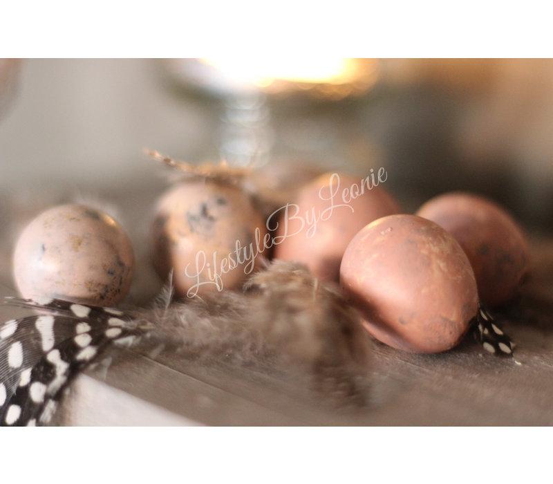 Doosje kwartel eitjes Pastel Pink 12 stuks