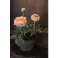 Zijden Ranonkels in potje roze 16 cm