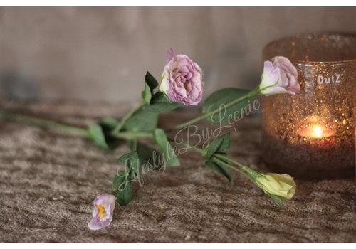 LifestyleByLeonie Zijden lisianthus lila|56cm