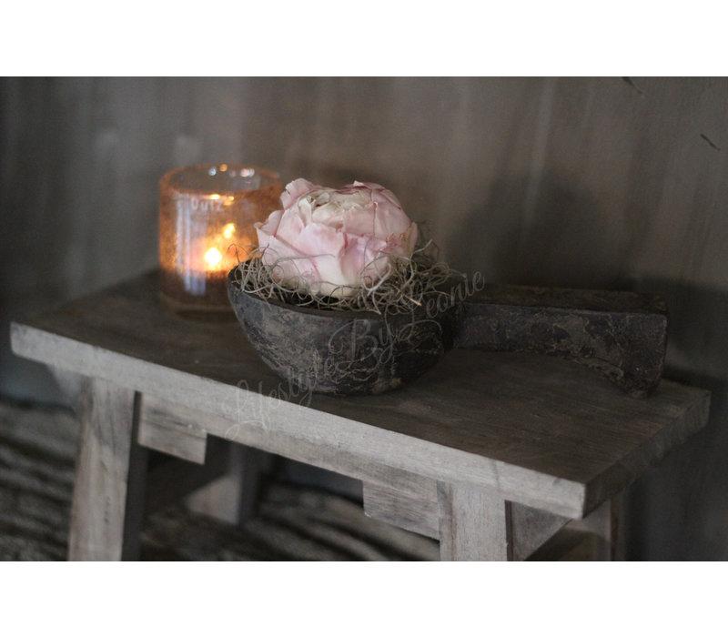 Gevriesdroogde pioenroos |Shirley Temple