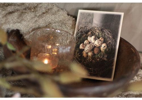 LifestyleByLeonie Geurzakje Nest met kwarteleitjes