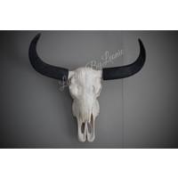 Buffel skull 43 cm