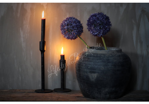 LifestyleByLeonie Zijden Allium paars 68 cm