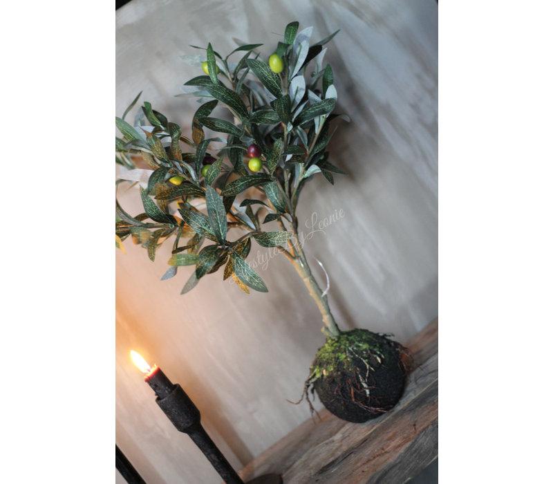 Zijden Olijfboom op stam 49 cm