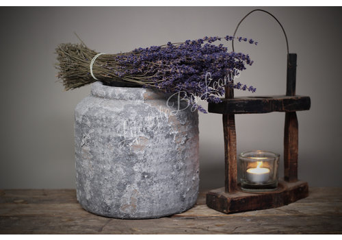 Bos gedroogde Zuid-Franse Lavendel