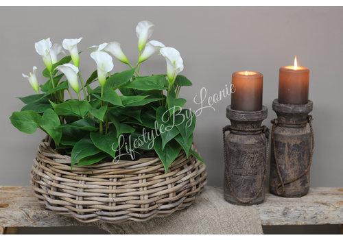 Zijden plant Calla 40 cm