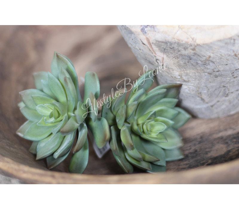 Groene lotus kunstplant 14 cm