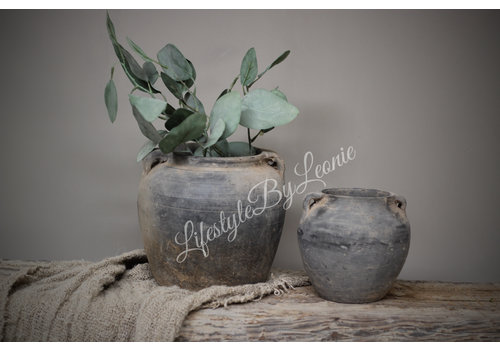 LifestyleByLeonie Zijden eucalyptus tak 46 cm