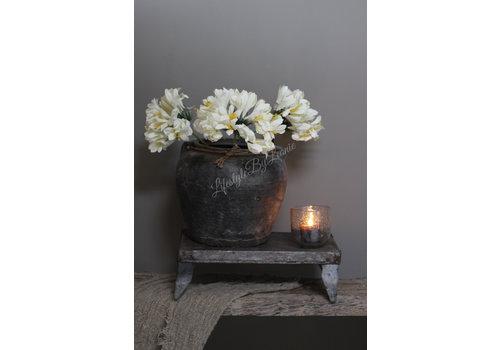 LifestyleByLeonie Zijden tak Achapanthus white 62 cm