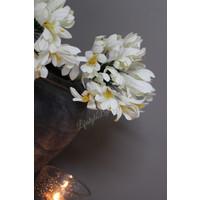 Zijden tak Achapanthus white 62 cm