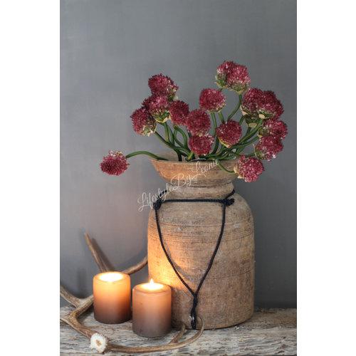 Zijden tak Allium garlic paars