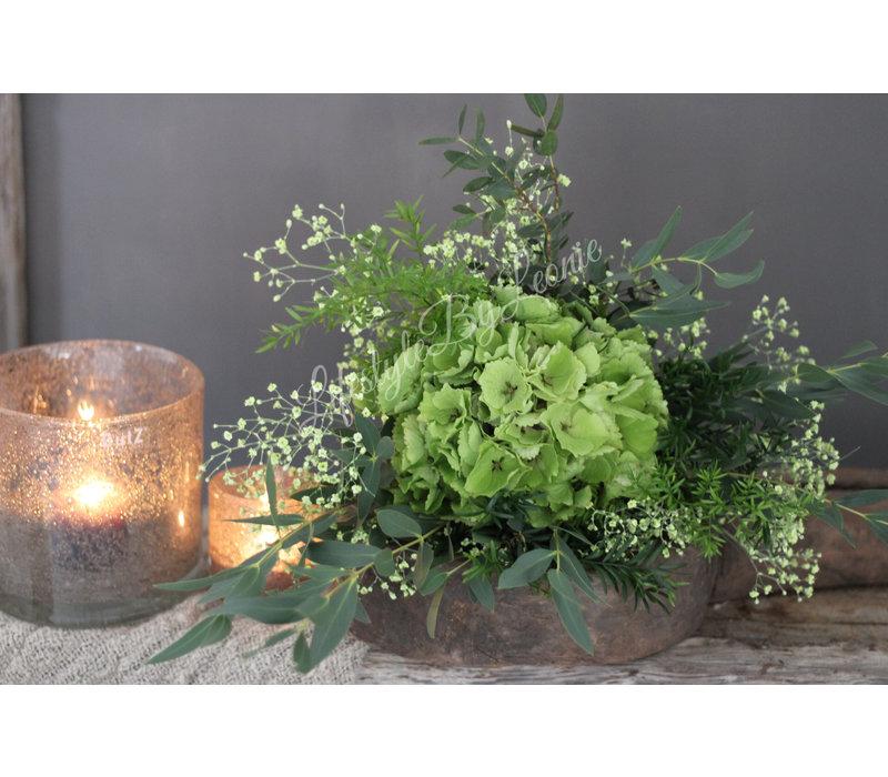 Toef groene Hortensia