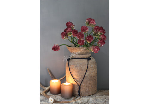 LifestyleByLeonie Zijden tak Allium garlic paars