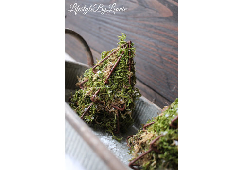 LifestyleByLeonie Roest ornament hanger Tree kerstboom + mos