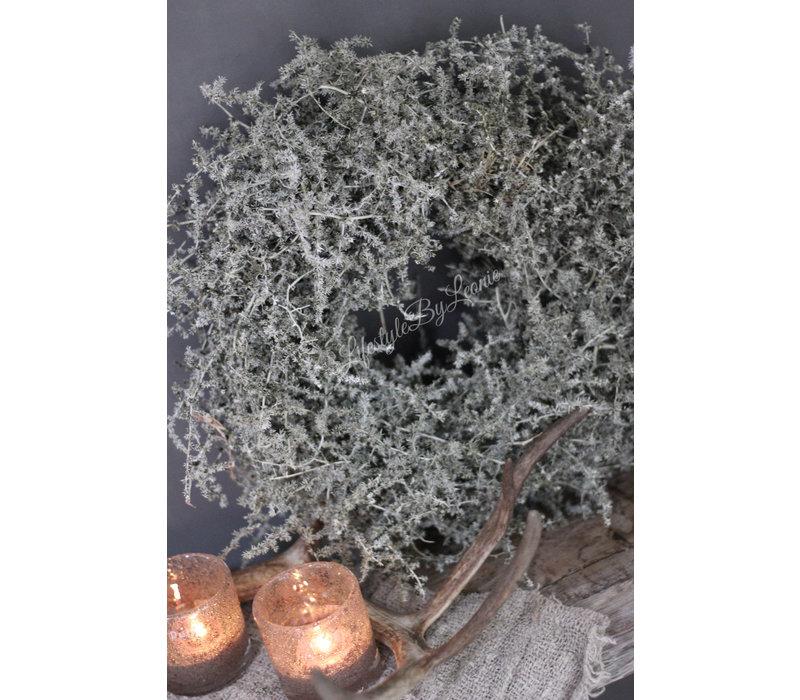 Wax krans Asparagus green 35 cm