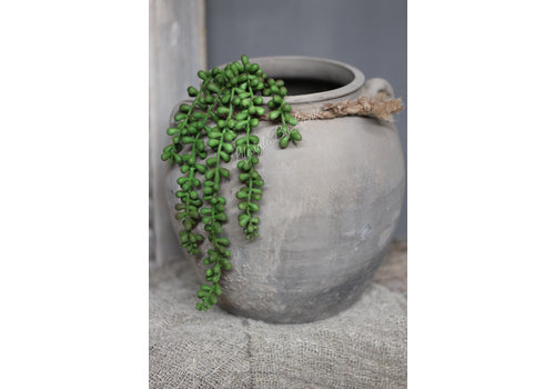 LifestyleByLeonie Groene vetplant hanger