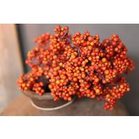 Namaak bessentak orange 83 cm
