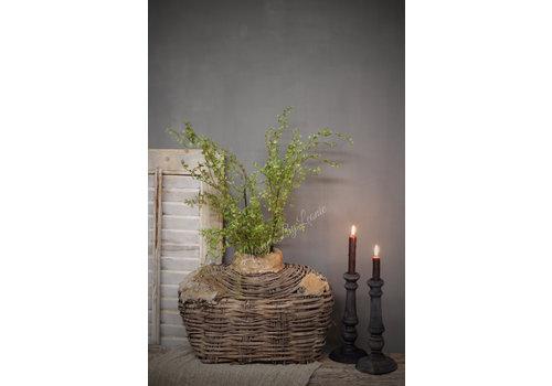 LifestyleByLeonie Zijden corokia green bush 105 cm