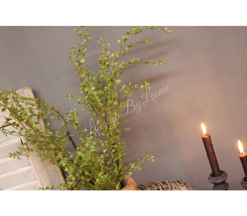 Zijden Corokia green bush 105 cm