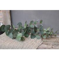 Zijden Eucalyptus bosje grey/green 90 cm