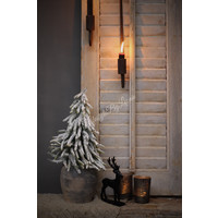 Kerstboom sneeuw Dax