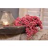 LifestyleByLeonie Bosje roze Pepperberries