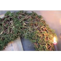 Grote bonsai / moskrans 60 cm