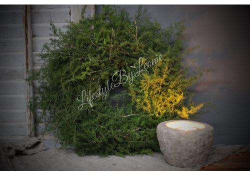 LifestyleByLeonie Krans wilde Asparagus 35 cm