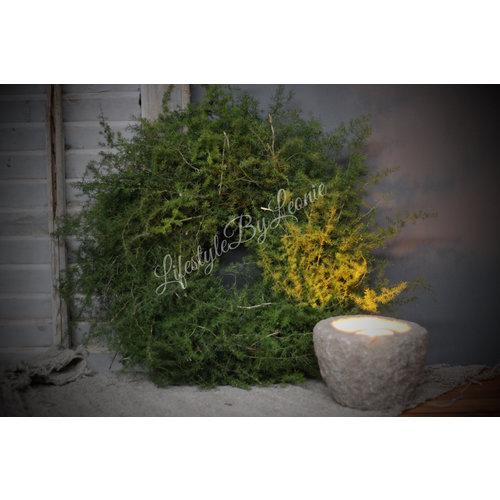 Krans wilde Asparagus 35 cm