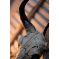 Grote lampvoet met skull Black 55 cm
