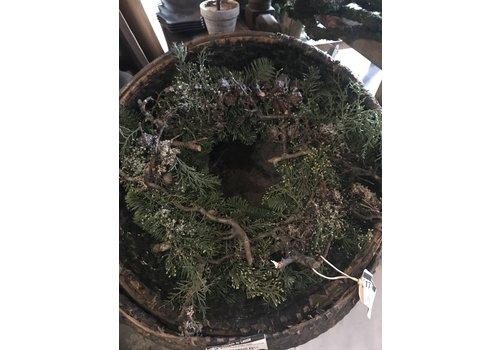 LifestyleByLeonie Krans nobilis / bonsai / cupresus 30 cm
