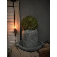 Groene mosbal 20 cm