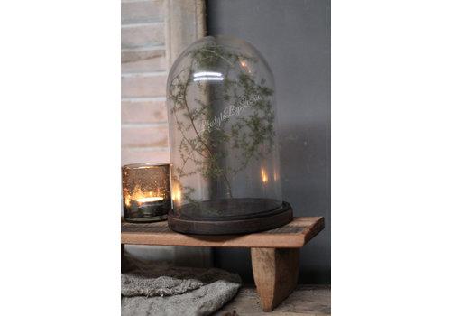 LifestyleByLeonie Glazen stolp Bell op platte houten voet 26 cm
