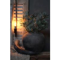 Lange Hertshoorn tak 53 cm