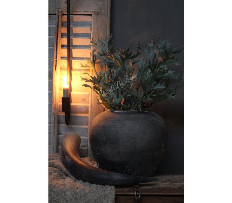 Lange Hersthoorn tak 53 cm