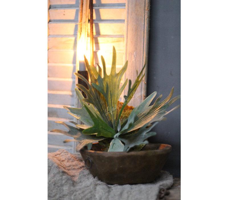 Namaak plant Hertshoorn 32 cm