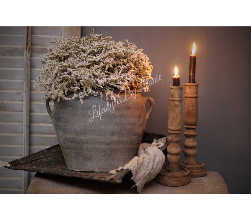 Gedroogde bos Statice White