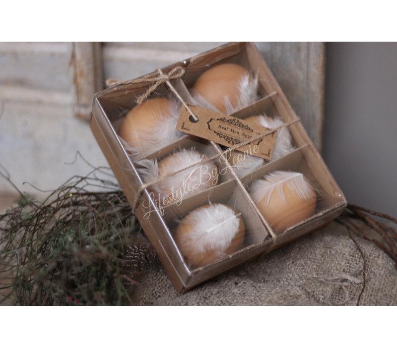 Doosje eieren met veer - 6 stuks