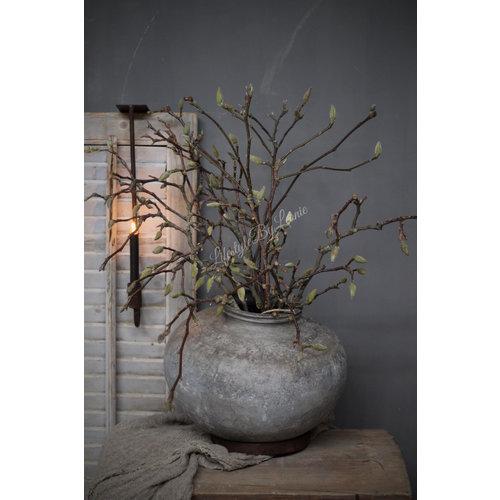 Bos Magnolia takken 60 cm