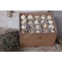 Grote doos kwarteleitjes - 60 stuks