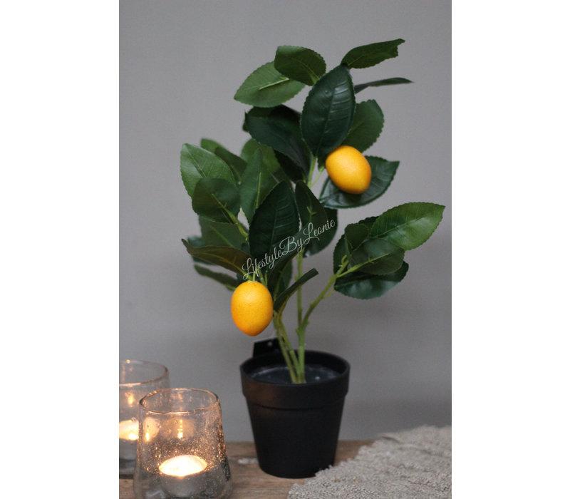 Namaak citrus boompje 30 cm