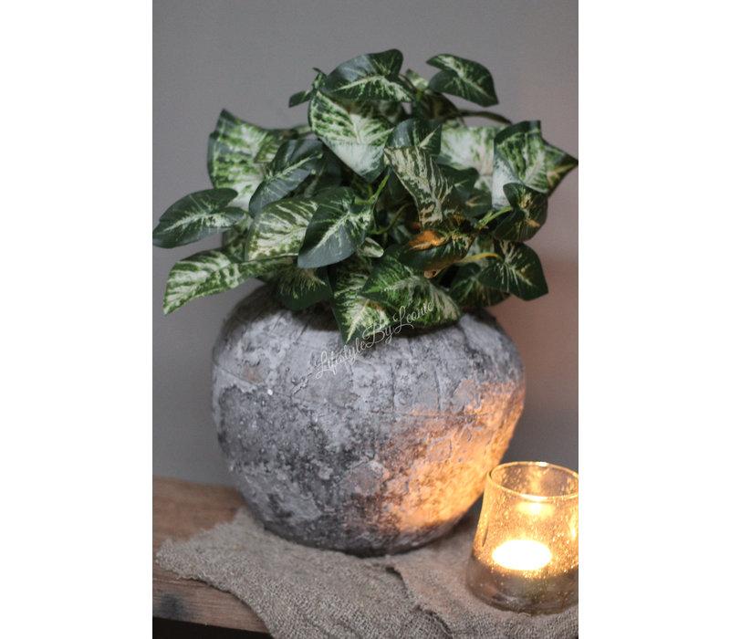 Bosje namaak groen Syngonium 33 cm