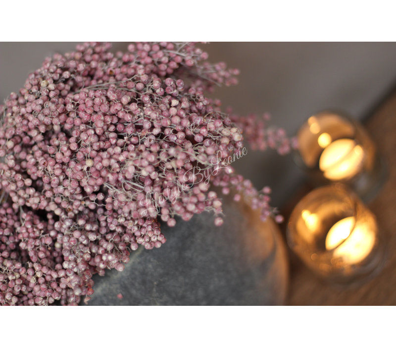 Bos gedroogde Pepperberries frosted pink