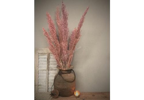 LifestyleByLeonie Tak cortaderia veer / pampas gras Pastel pink