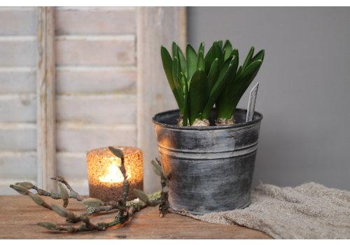 LifestyleByLeonie Zinken pot met Hyacinth bollen