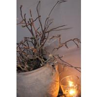 Bos Magnolia takken 90 cm