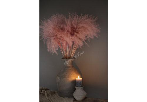 LifestyleByLeonie Tak tipa grass Pastel pink