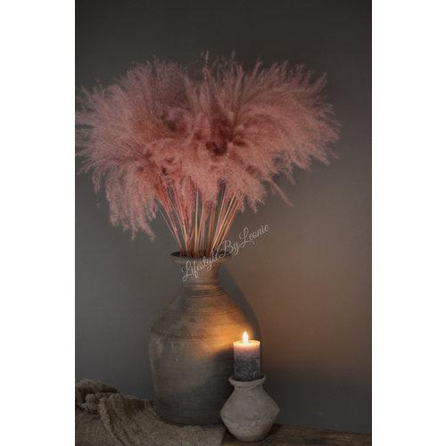 Tak tipa grass Pastel pink